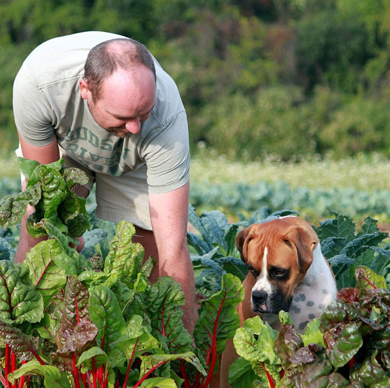 Gardening Improves Your Mind and Body