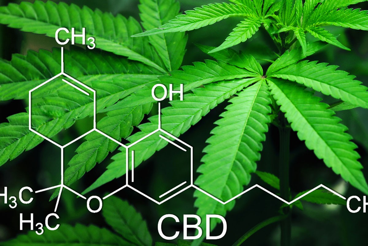 Cannabis CBD Glossary of Terms and Definitions